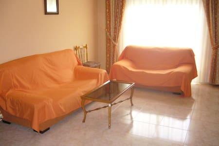 CENTRICO PISO EN TOMELLOSO - Tomelloso - Apartment