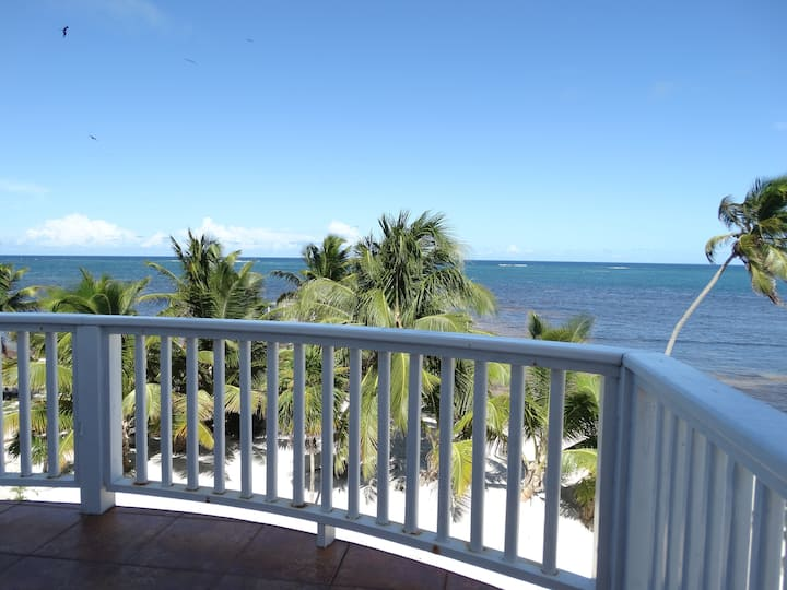 Ocean Front 2 Bedroom villa (24B)