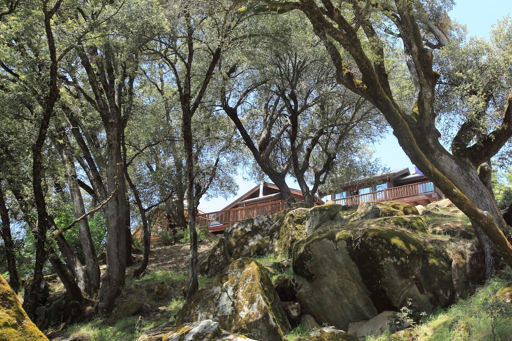 Casa Rio sits on top of a bluff with views of the city and oak trees