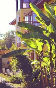 """Гостевой """"Дом на Лесной"""" в Пицунде рядом с морем - Pitsunda - B&B"""