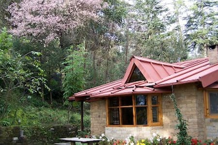 Snow View Cottage - Almora