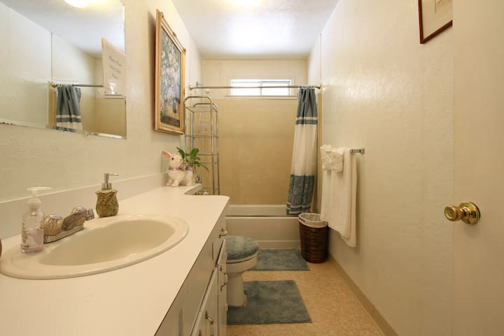 Light/bright, full private, guest bathroom, complete w/plush towels, hairdryer, soap & shampoo, complimentary toothbrush