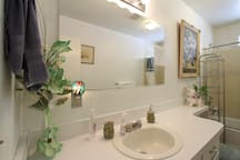 Guest/private bathroom/complete w/plush, soft, towels, hairdryer, soap & shampoo, complimentary toothbrush