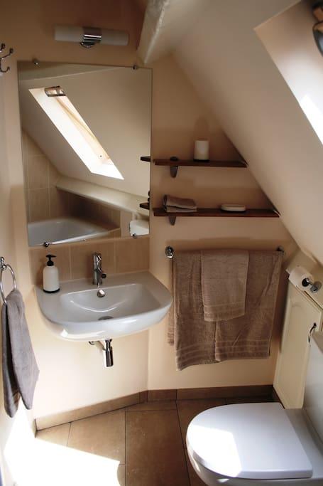 En suite to the main bedroom
