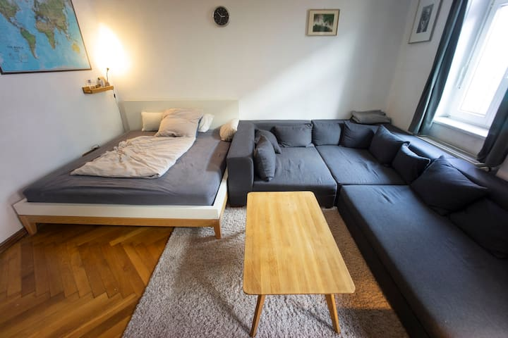 Huge room, very centrally located