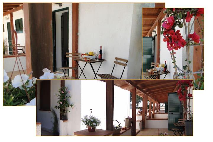 Country house in Cala Rossa - Favignana - Apartamento