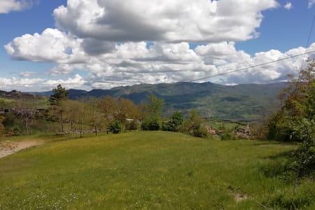 Un Nido sulla Valle