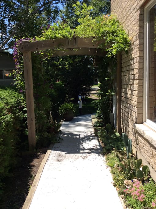 Pathway to lower level summer time