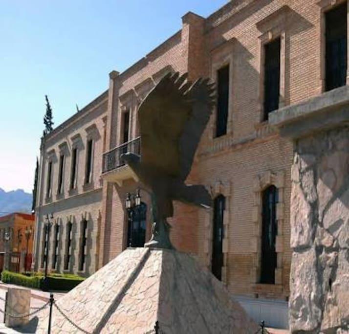 Museo de las Aves