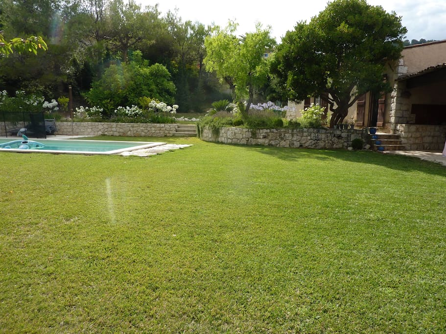 Pool and landscaped garden