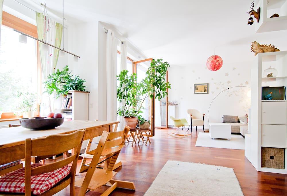 40m2 living-dining room