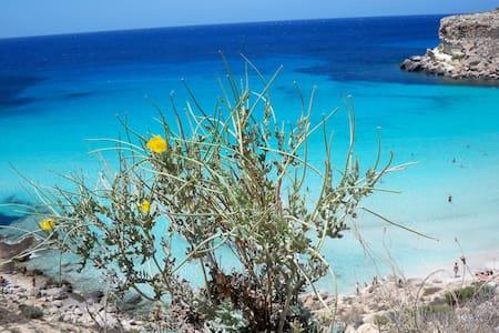 Serena Guest House - Lampedusa Elegant villa - Lampedusa
