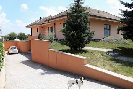 Apartment Villa Larin - Odranski Obrež - Apartment