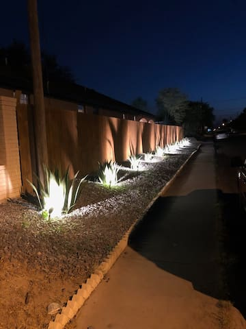 Maguey Landscaping
