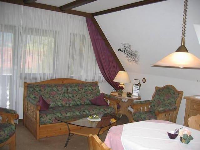 Ferienwohnungen Haus Schneider, (Gutach (Schwarzwaldbahn)), Ferienwohnung Talblick, 52qm, 1 Schlafzimmer, max. 2 Personen