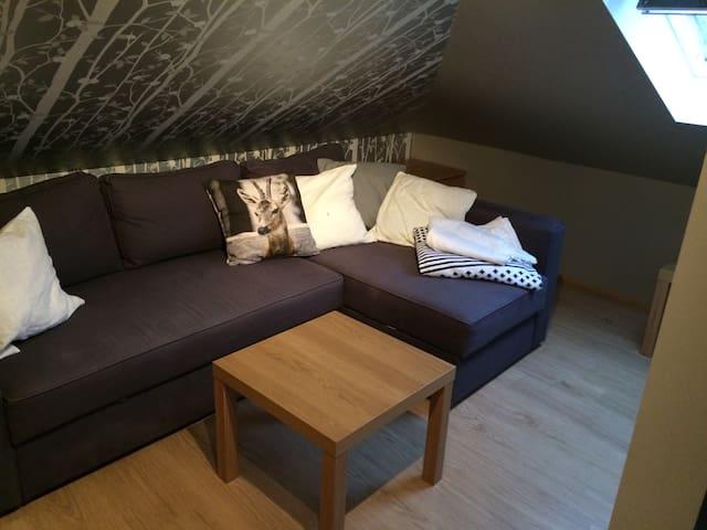 Cozy room, wc and living room - Reykjavík