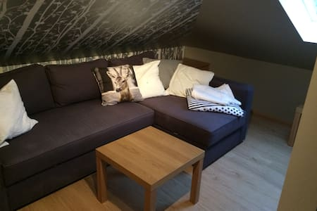 Cozy room, wc and living room - Reykjavík