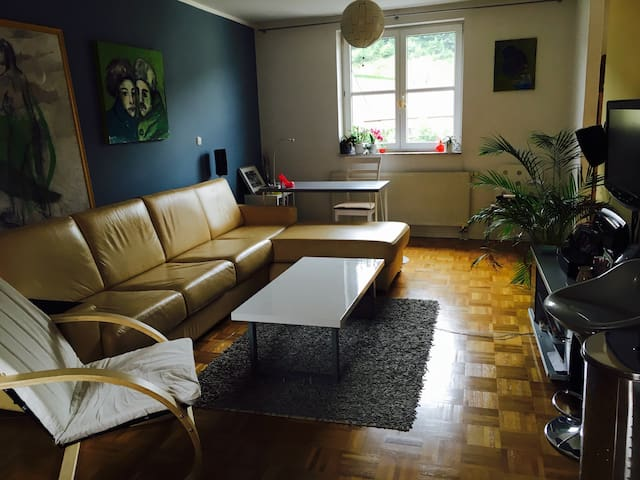 Two floors apartment next to forest - Ljubljana - Casa