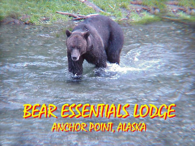 The Bear Den, Bear Essentials Lodge