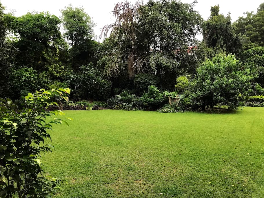 The lush green 1 lawn in front to sit and chill