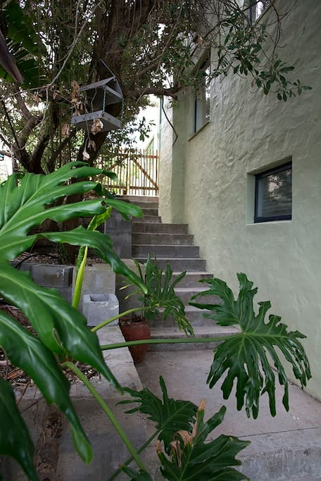 Steps up to private entrance