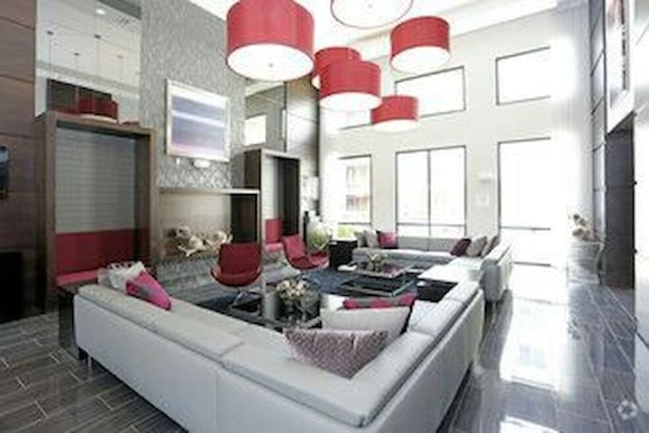 Beautiful Modern home entire space - Houston - Apartament