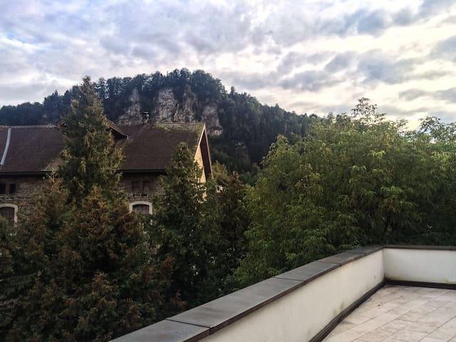 Penthouse Flat Feldkirch Citycenter - Feldkirch - Apartamento