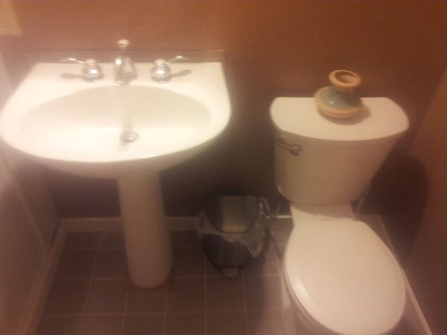 New pedestal sink and toilet.