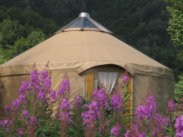 Peaceful Alaskan Yurt just outside  Homer.