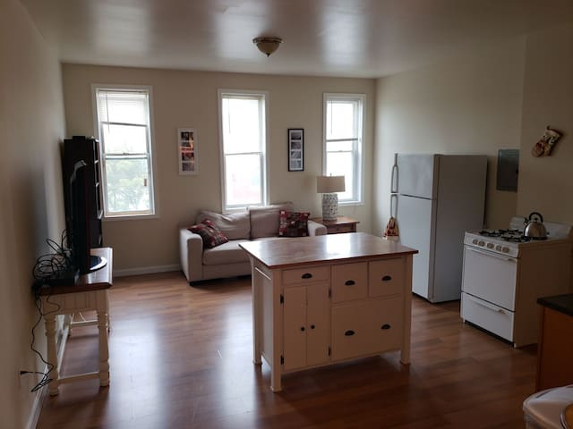 Entire apt NO MINIMUM STAY! Charles Village JHU