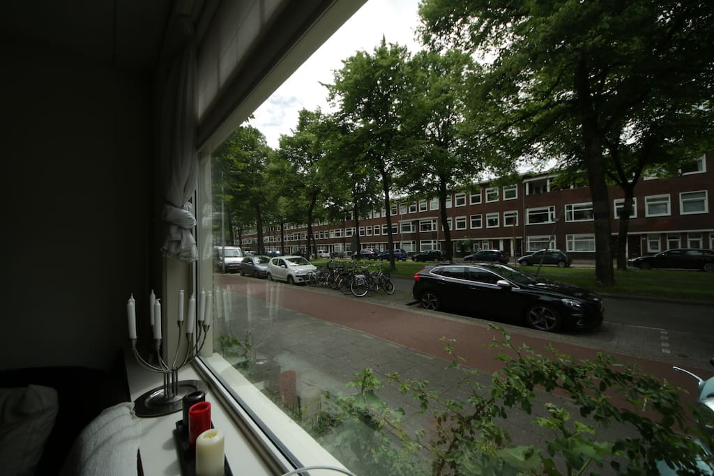 street view from living room