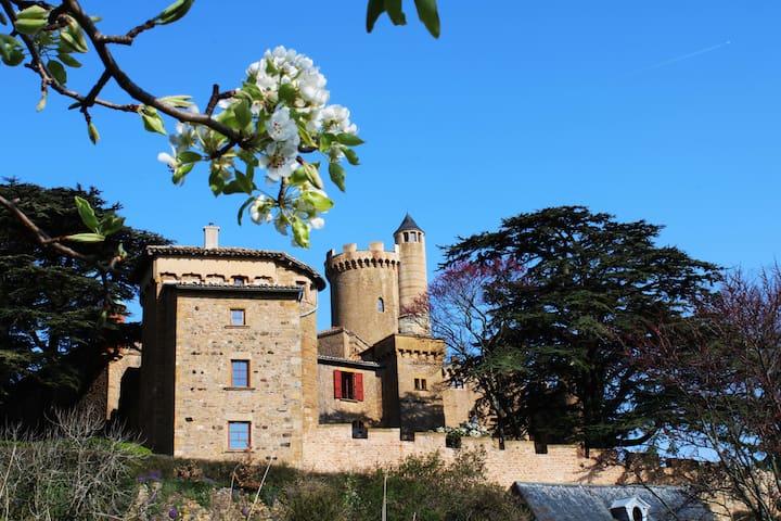 Fary Tale Castle - outstanding views ! Beaujolais