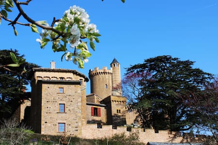 Fary Tale Castle - outstanding views ! Beaujolais