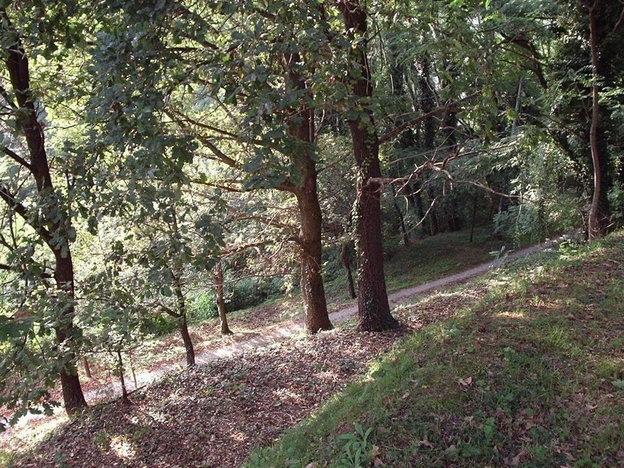 Si accede alla casa tramite 200mt di strada non asfaltata -It is accessed by 200 meters of gravel road