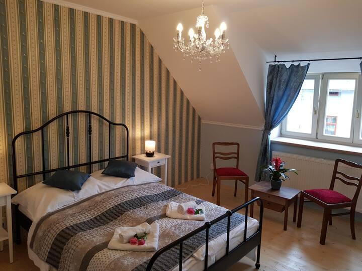 Vila Janáčkova - 1st republic villa