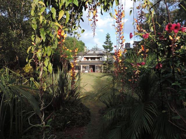 Sheilan Stud - A Tropical Heaven Full House