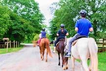 Horseback Riding at Anne Springs Close Greenway