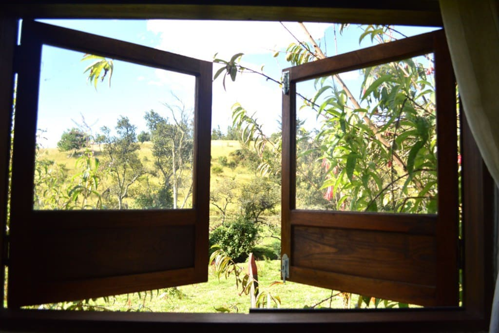 Este es uno de los televisores de la casa. Al abrir la habitación principal pueden verse por la mañana colibríes volando muy cerca de ahí.