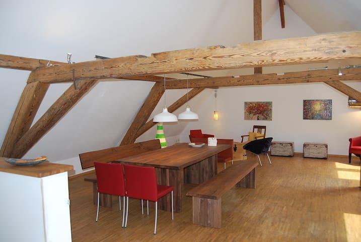 Ferienwohnung Neumühle - Wolfegg - Wohnung