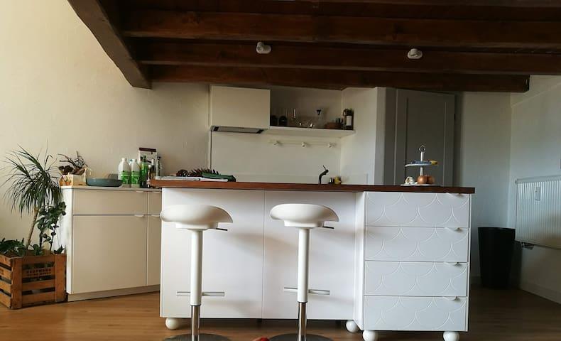 Cosy loft/studio in Montreux