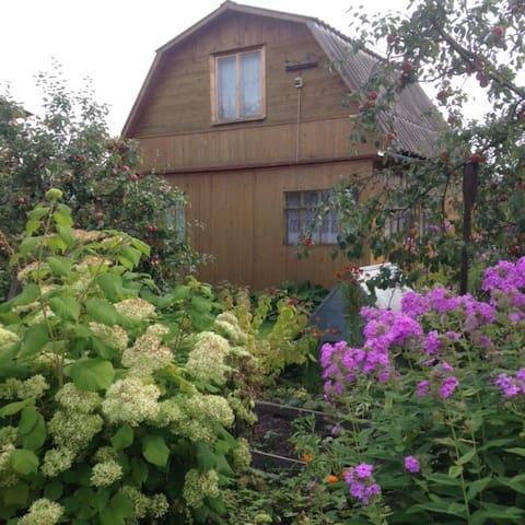 Летний дом в дачном поселке - Торики - House