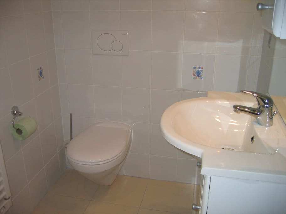 Salle de douche avec WC - sèche serviette - meuble vasque avec miroir
