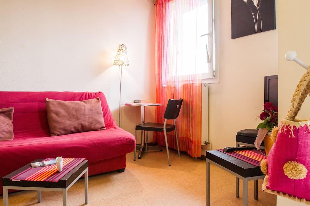 Pièce principale : Canapé lit de qualité, télé, internet (wifi)