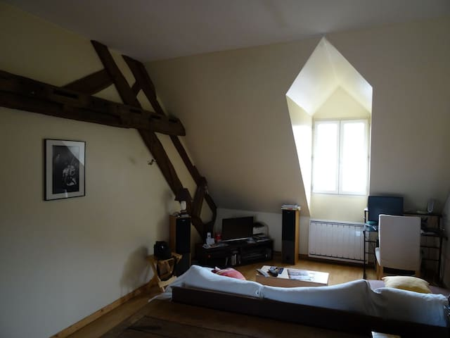 Appartement type F3 en hyper-centre