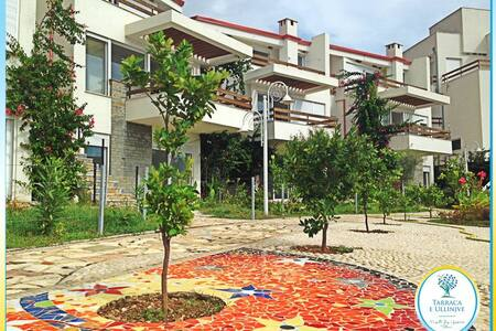 OlivesTerrace One Bedroom Apartment - Dhermi - Apartment - 0