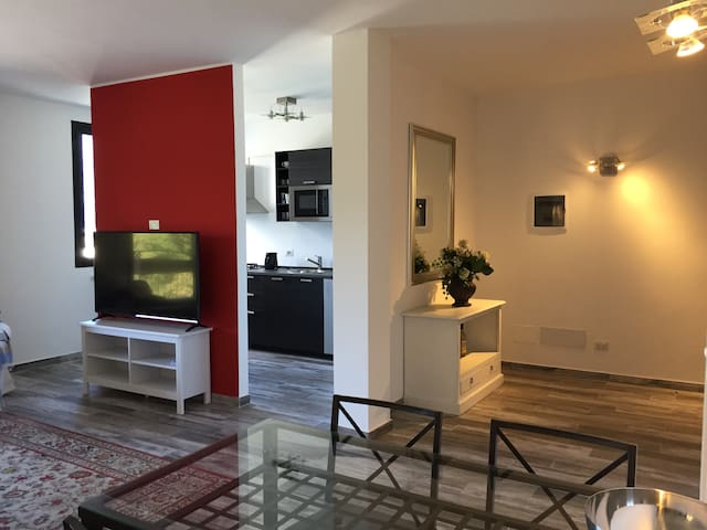 Luxury Apartment with great view on Lugano lake
