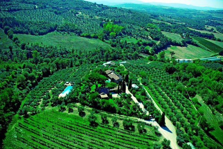 Villa with pool, Jacuzzi, winery & culinary class