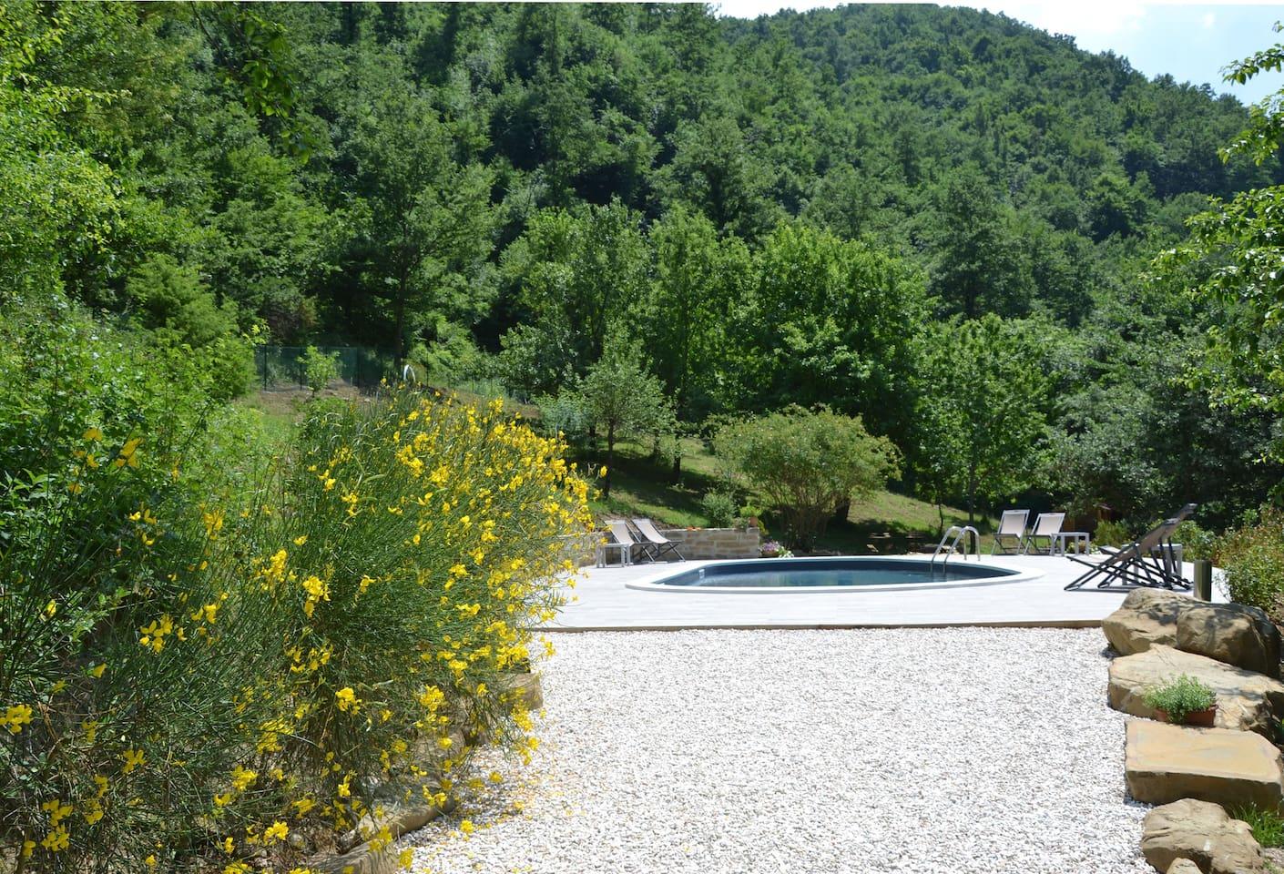 la nostra piscina, tutta nuova e immersa nel verde a 360 gradi!
