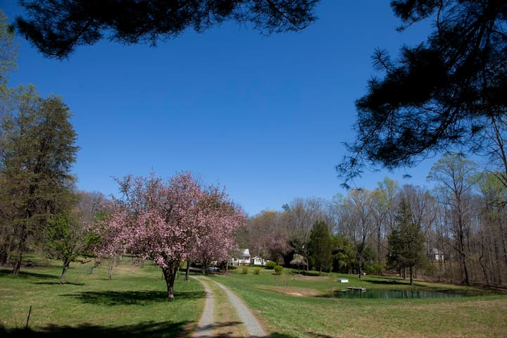 Fox Hollow Farm - Barboursville - Apartment