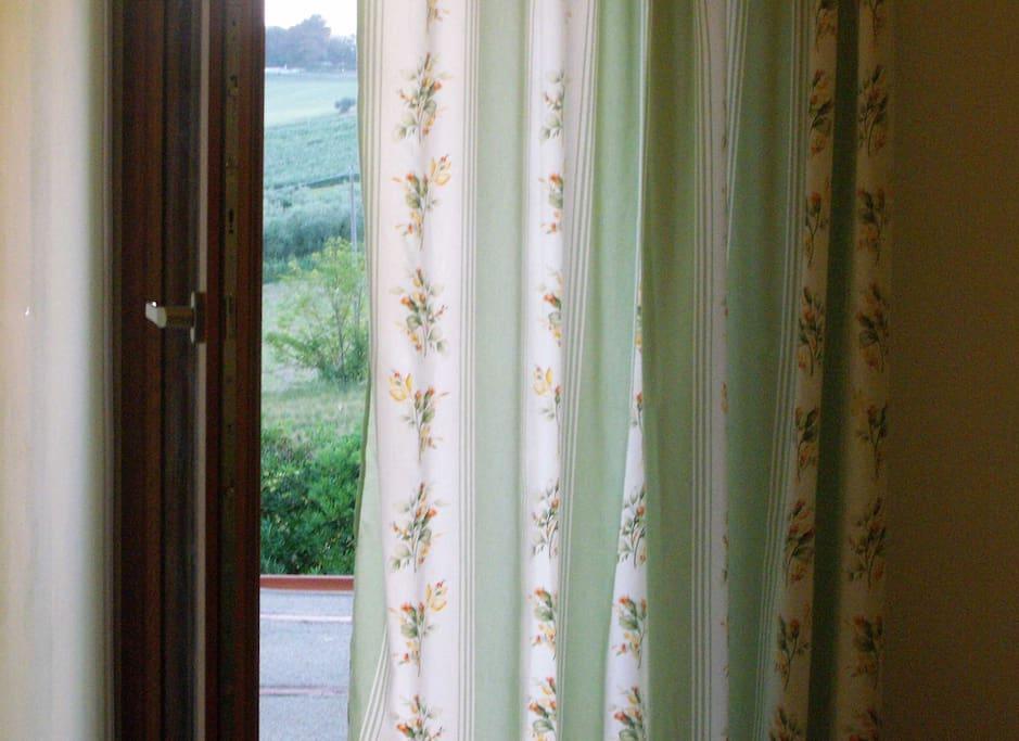 www.ilvecchionespolo.it